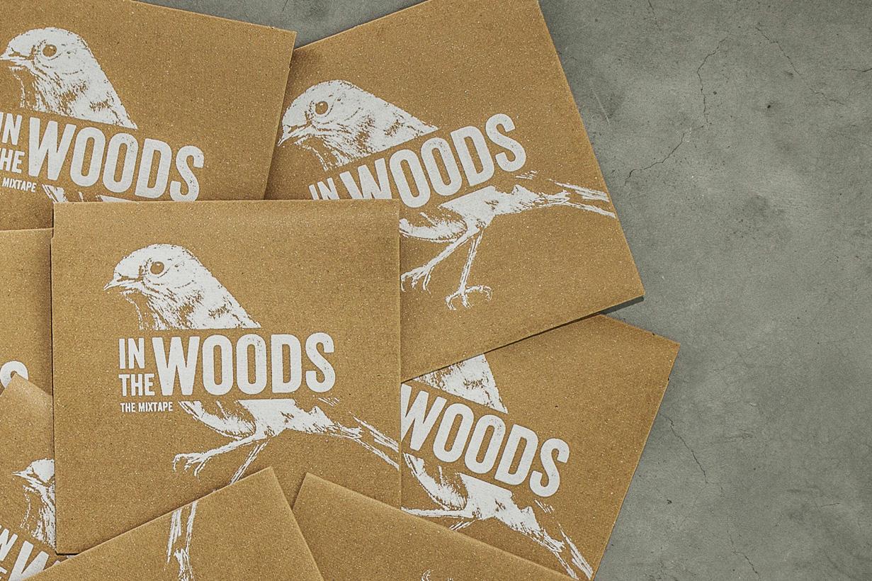 inthewoods2a